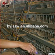 Geflügelfarm-Wachtel-Zuchtkäfige für Verkauf in Malaysia