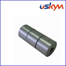Imán de SmCo del anillo / imanes circulares de SmCo (R-004)