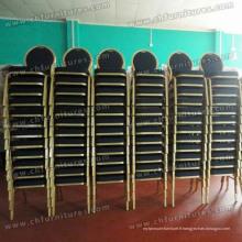Promotion empilant des meubles en aluminium de conception (YC-ZL13-02)