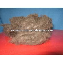 natural camel wool fiber