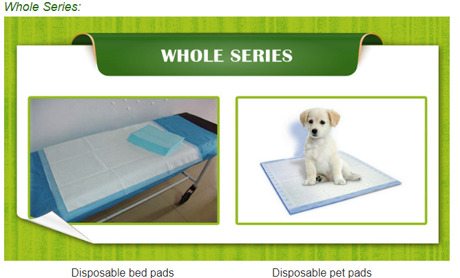 Training Pet Pad