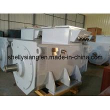 Pour vendre Siemens Alternateur Sans Brushless (IFC6 504-6 900kw / 1000rpm)