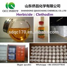 Fábrica direta Fornecimento Agroquímico / Herbicida Clethodim 85% -92% TC 24% EC 12% EC CAS 99129-21-2