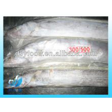 FIBRA CONGELADA FISH / HAIRTAIL INTEIRO RODADA INDONÉSIA