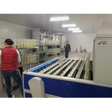 Glass bottle automatic spray coating line