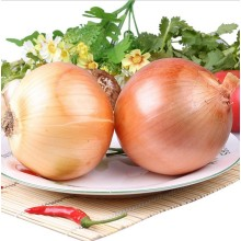 In 2016 The New Harvest Fresh Onions