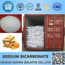 China The Biggest Suppier Sodium Bicarbonate as Food Additives