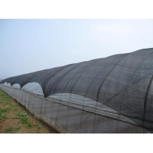 Black Shade Net for Vegetable