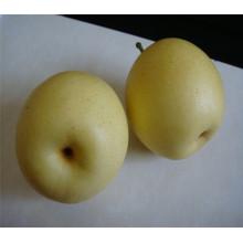 Asiatische Birne der neuen Ernte 2017 mit niedrigem Preis