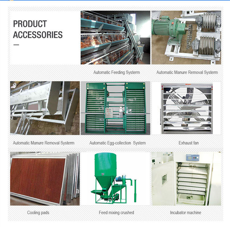 A type layer cage accessories