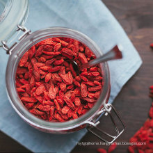 factory OEM packaging and brand organic planting freeze dried  goji berry
