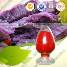 Фиолетовый Картофельный Порошок