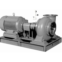 Horizontale elektrische Schlammpumpe mit Motor