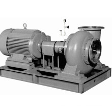 Horizontal Electrical Slurry Pump