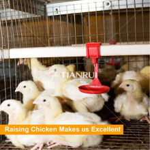 Moderate price pullet chicken battery cage for chicks