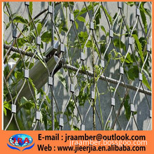stainless steel cable mesh for green plant climbing net