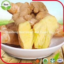 Chinesisch Ganze frische Ingwer mit verschiedenen Größen