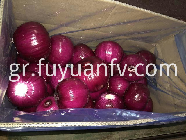peeled red yellow onion