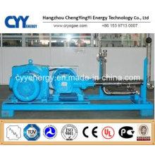 Cyyp 55 Ununterbrochener Service Großer Durchfluss und hoher Druck LNG Liquid Oxygen Stickstoff Argon Multiseriate Kolbenpumpe