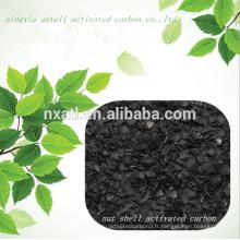 Coque de palmier charbon actif