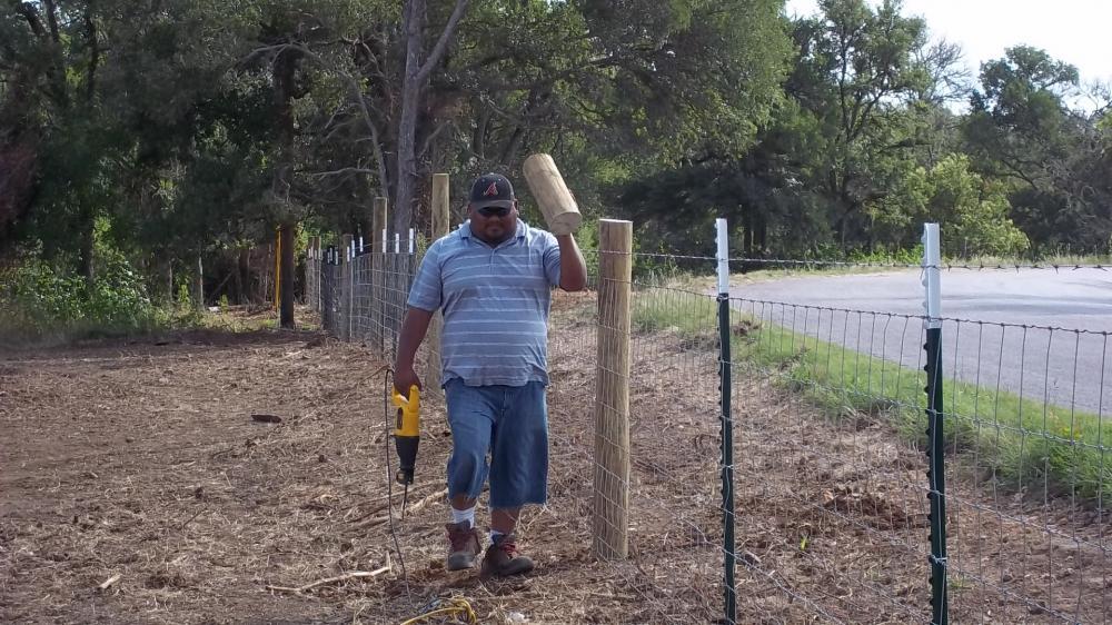 Field Fence 7
