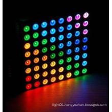 RGB Full Color DOT Matrix (GNM-23881C)