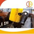 agriculture équipement bovins ferme utilisation brosse à égrainer bovins brosse