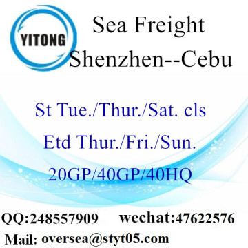 Shenzhen Port Sea Freight Shipping à Cebu