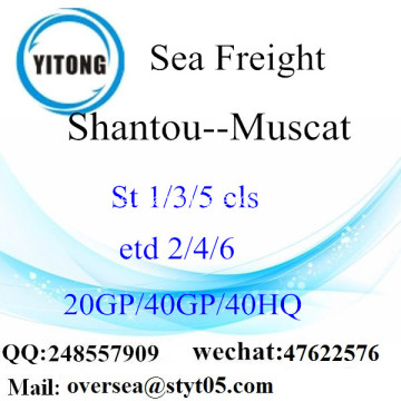 Shantou Port Sea Freight Shipping ke Muscat