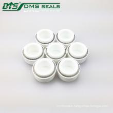 Joints PTFE à ressort sous tension DMS / Piston à ressort en téflon Variseal