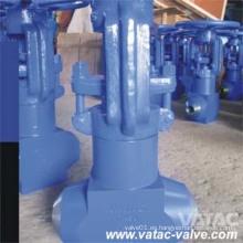 Válvula de globo forjada de la central eléctrica de alta presión con final del Bw