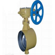 worm gear turbine drive lug butterfly valve