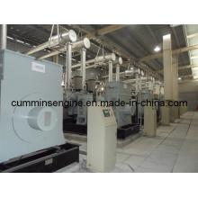 1000rpm Alternateurs haute tension pour turbine à eau (6301-6 1400kw)