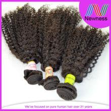 Brazilian human hair afro kinky curly