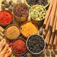 Épices mélangées, assaisonnement, goût différent, cinq épices, maïs, saveur de poisson, saveur de boeuf musulman
