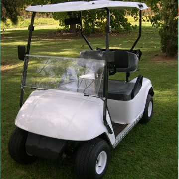 2 kursi ez go golf carts