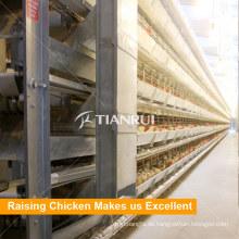 Hochwertiger Broiler Huhn Batteriekäfig