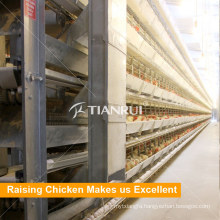 High Quality Broiler Chicken Battery Cage