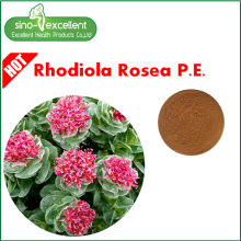 Best Quality for Standardized Herbal Extract Salidroside Rhodiola Rosea Extract export to French Polynesia Manufacturers