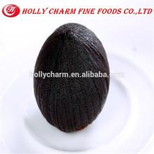 GMP Kosher Halal fabricant Échantillons gratuits Extrait d'ail noir de haute qualité