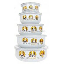 5pcs korean bowl design enamel ice bowl /salad with PE lid