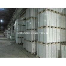 Jumbo Roll C1S Revestimiento de papel Fbb