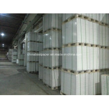 Jumbo Roll C1S Coated Fbb Paper Board