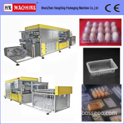 Plastic Box Making Machine (HX-71H)