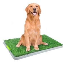 Dog Pee Pad for Potty Training