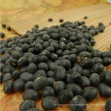 Heißer Verkauf 2012 große schwarze Bohne mit gelbem Kern