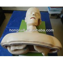 Manequim de treinamento de intubação de via aérea elétrica ISO, treinamento de intubação