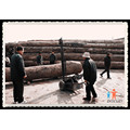 Sawmillworld! Wood Slasher in Factory Machinery
