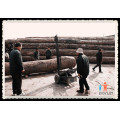 Sawmillworld! Slasher madeira na fábrica de máquinas