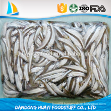 Chinese supplier high quality fresh frozen iqf pond smelt